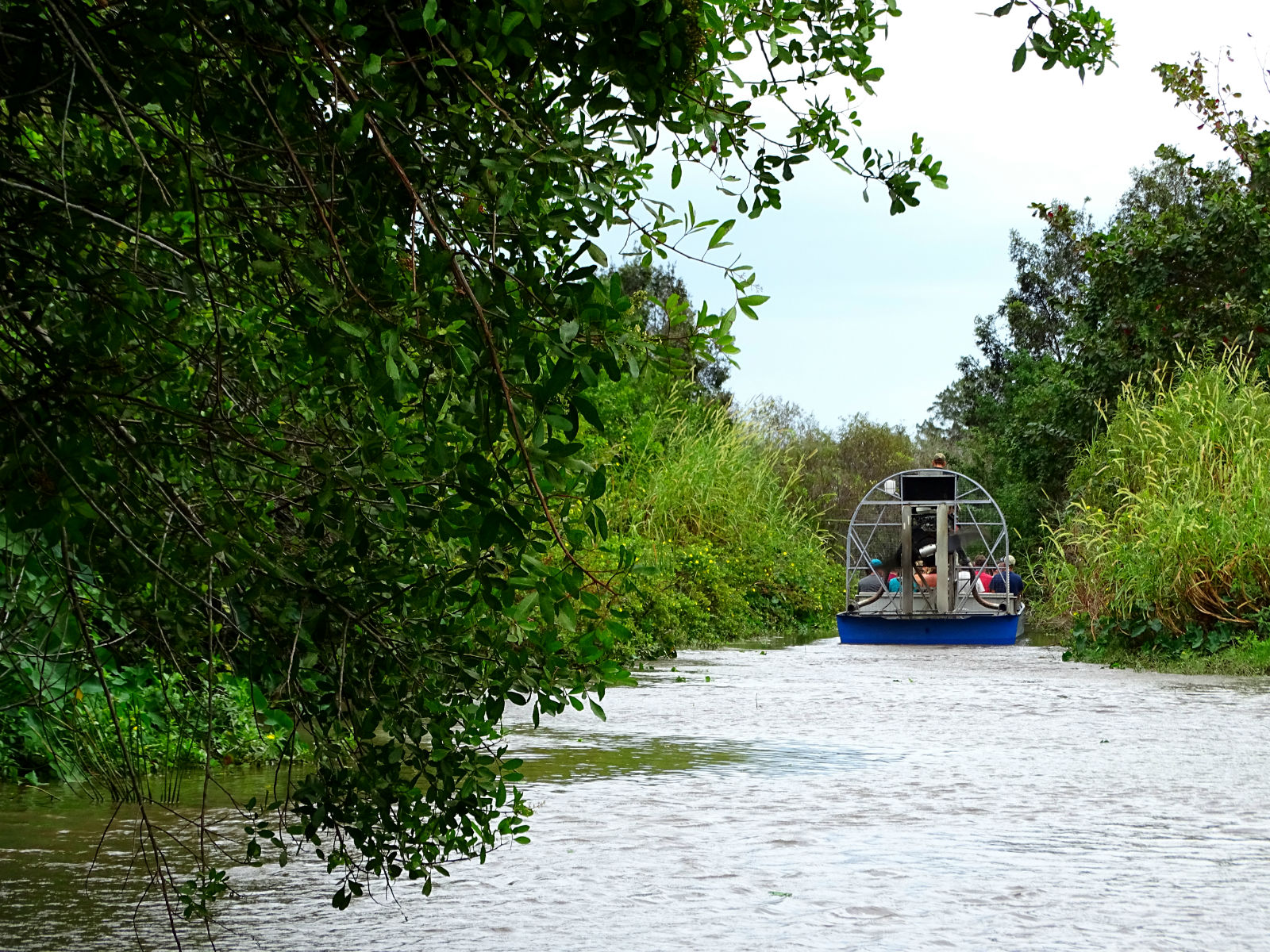 Airboat-Tour in den Everglades