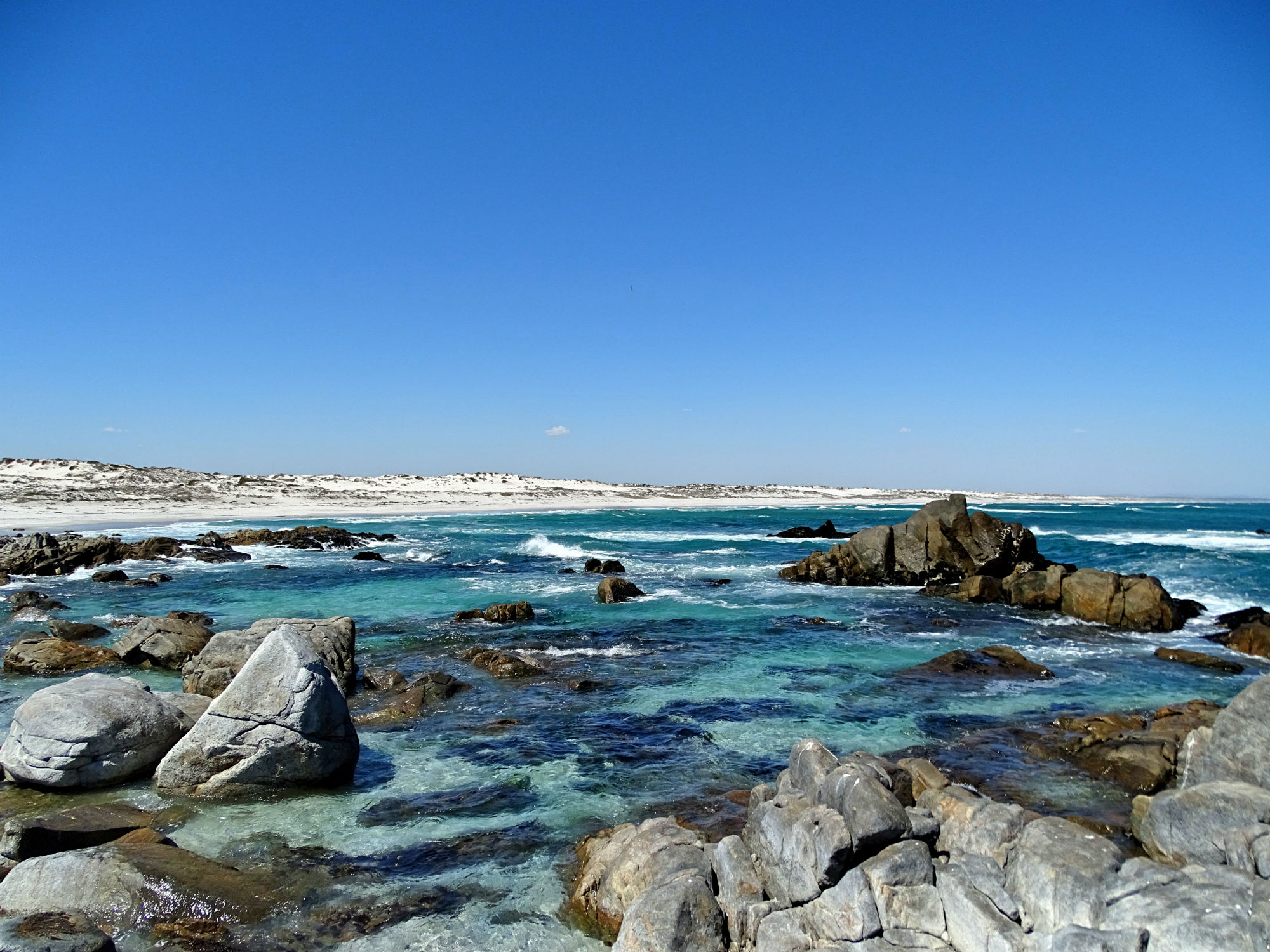 Tsaarsbank, West Coast National Park